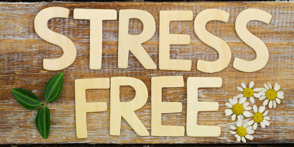 The 10 Steps to Become A Stress-Free Caregiver