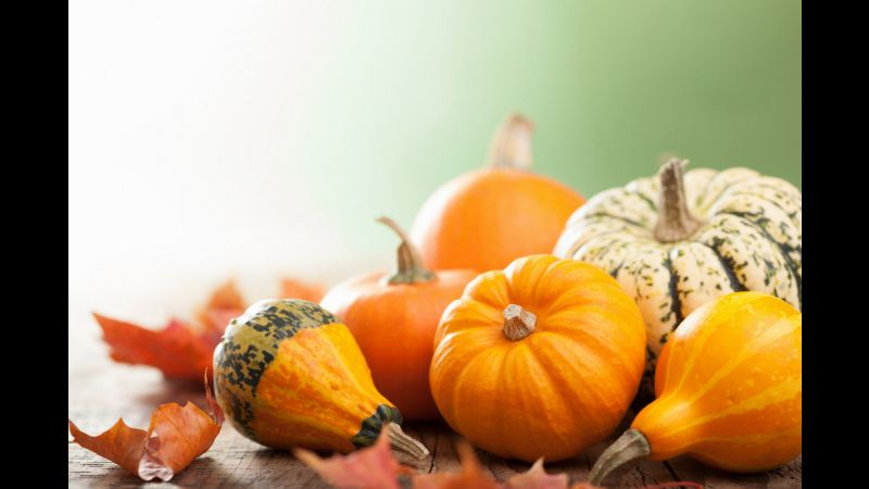 Seasonal Foods to Add To Your Plate