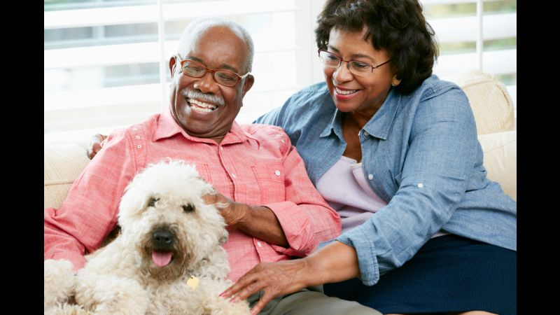 Meals on Wheels' PALS Program: Feeding Seniors And Their Pets